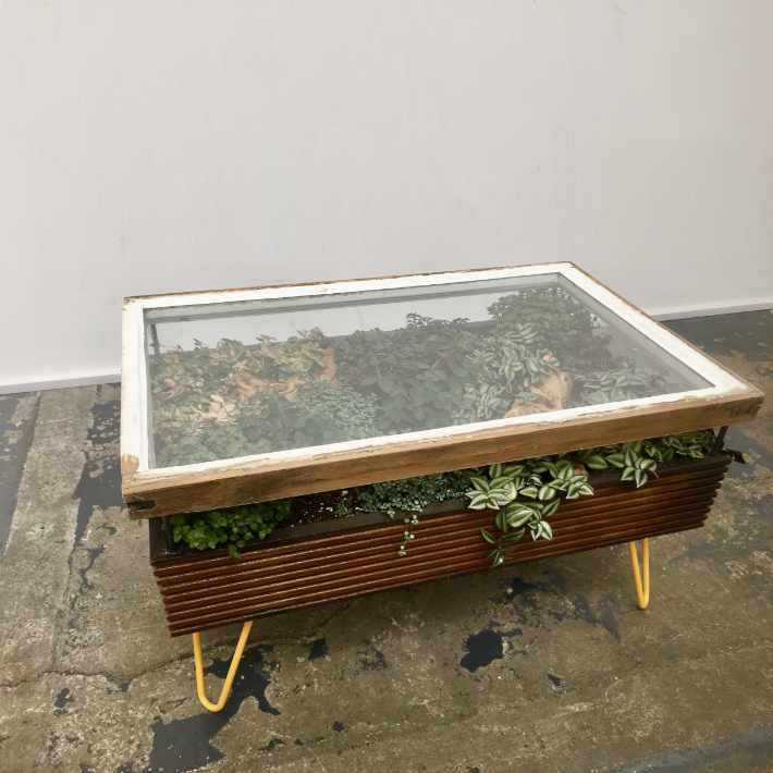 Hackney Botanical Terrarium Coffee Table with upcycle window | upcycleDZINE
